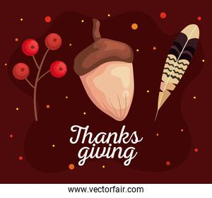 thanksgiving day autumn berries acorn and feather vector design