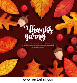 thanksgiving day autumn leaves berries and acorns vector design
