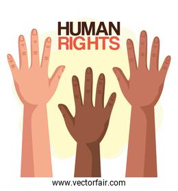 Human rights with diversity hands up vector design