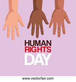 Human rights with diversity hands vector design