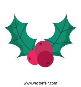 merry christmas holly berry decoration and celebration icon