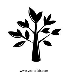 tree branch leaves nature silhouette icon