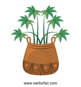 potted plant leaves foliage decoration interior