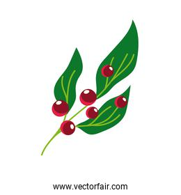 branch leaves berry nature vegetation cartoon icon