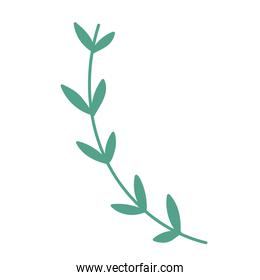 branch vegetation leaves foliage nature icon