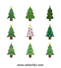 merry christmas trees ornament and decoration icons set