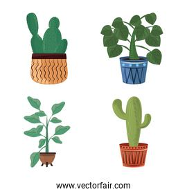 houseplant in pots home garden nature decoration icons