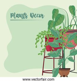 plants in pots decor stand ornament green background