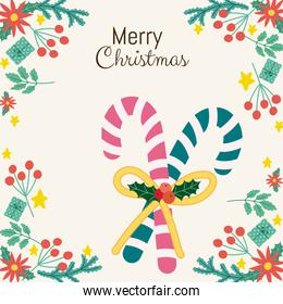 merry christmas greeting card candy canes with holly berry frame decoration