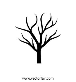 dry tree with branches season black silhouette style