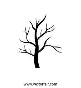 dry tree with branches season silhouette style