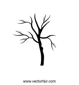 tree with branches silhouette style icon