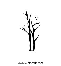 two autumn season dry trees with branches silhouettes style icons