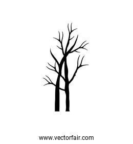 two autumn season dry trees with branches silhouettes style