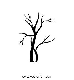 two autumn dry trees with branches silhouettes style