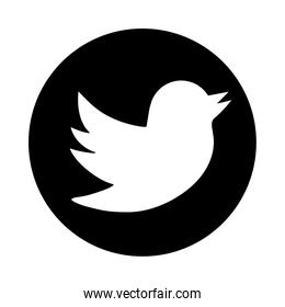 twitter social media logo silhouette style icon