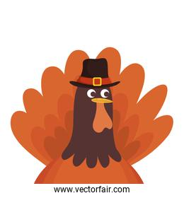 thanksgiving turkey with pilgrim hat character