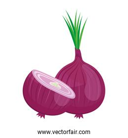 fresh vegetable purple onion healthy food icon