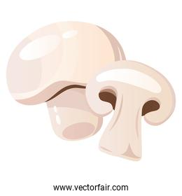 fresh vegetable mushroom healthy food icon