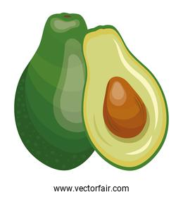 fresh avocado vegetable healthy food icon