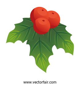christmas decorative leafs with berries