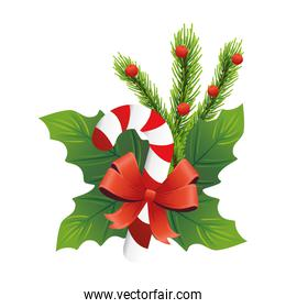 christmas decorative leafs with sweet cane