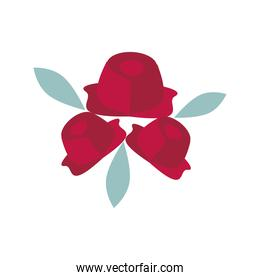 roses flowers bouquet flat style icon