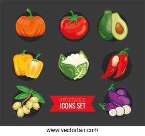 bundle of eight vegetables set icons and lettering