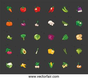 bundle of thirty vegetables set icons