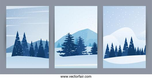 beauty winter three landscapes scenes with forest