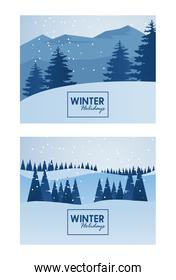 beauty winter landscapes scenes with letterings