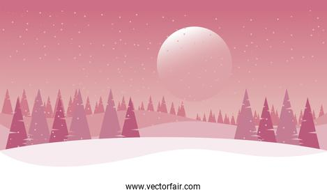 beauty pink winter landscape with sun and pines trees