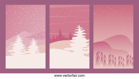 beauty three pink winter landscapes scenes