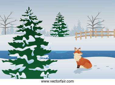 beautiful winter landscape scene with fox and pines