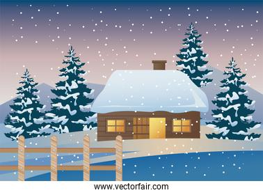 beautiful house and pines with wooden fence winter landscape scene