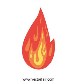 fire of orange, yellow and red color in a white background