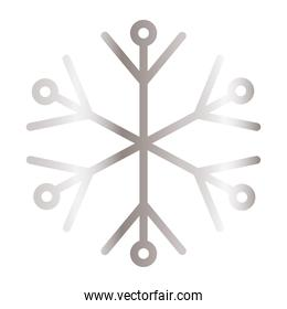snowflake of color light gray