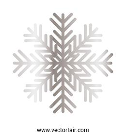snowflake of color light gray on white background