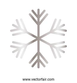 snowflake of color light gray in white background