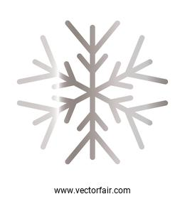 snowflake of color light gray over white background