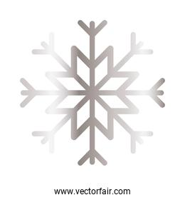 snowflake of color light gray with white background