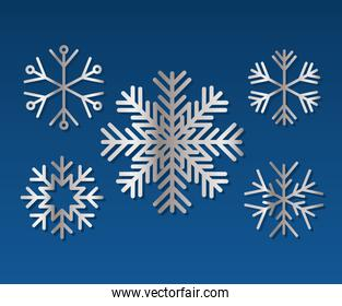 set of snowflakes of color light gray