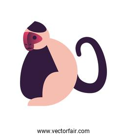 monkey abstract style icon vector design