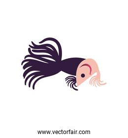 Fish animal icon vector design