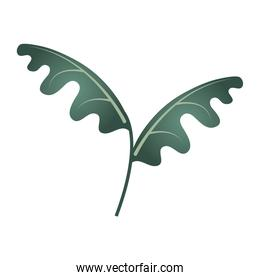 branch foliage tropical leaves exotic icon isolated