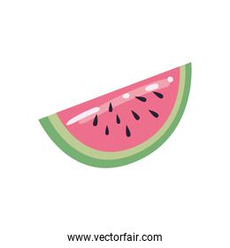 watermelon fruit flat style icon vector design