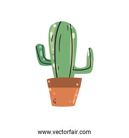 cactus plant flat style icon vector design