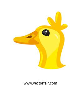 Isolated duck toy face vector design