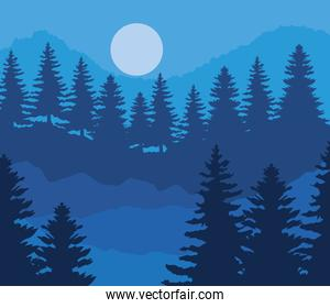 landscape of pine trees and moon on blue background vector