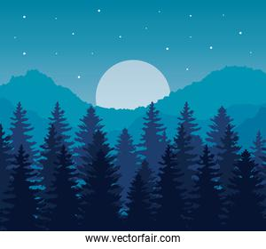 landscape of pine trees and moon on blue background